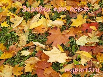 Загадки про осень, загадки про осень для детей,загадки об осени,детские загадки про осень,загадка про осень,загадки на тему осень,осенние загадки,Загадки про осень для школьников